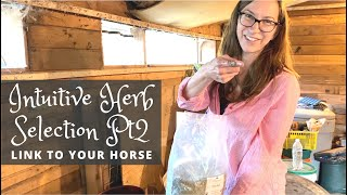 Use your Intuition to Choose Herbs for your Horse - Part 2