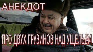 Анекдот про двух грузинов над ущельем