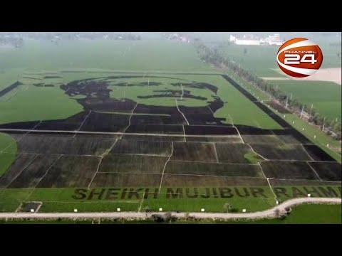 শস্যচিত্রে বঙ্গবন্ধু: গ্রিনেজ কর্তৃপক্ষের পরিদর্শনের পর মিলবে বিশ্ব রেকর্ডের স্বীকৃতি