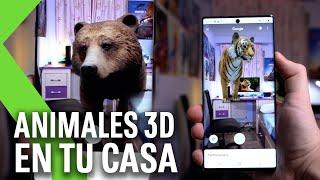 ANIMALES 3D en TU CASA | Así es la nueva función de GOOGLE