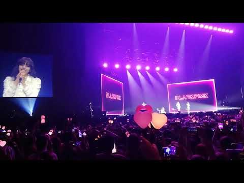 BLACKPINK concert talking (Dutch) Amsterdam + forever young + stay