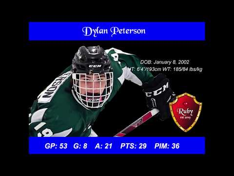 Dylan Peterson Scouting Report