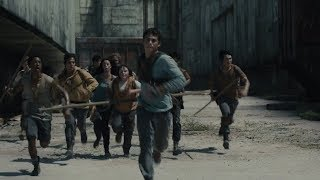 Thomas Leads The Way Through The Maze [The Maze Runner]