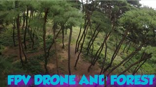 FPV Drone and Forest