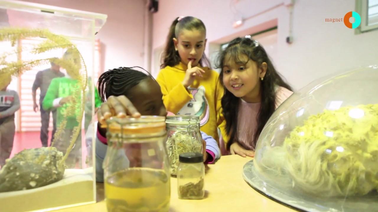 Descobrim l'Antàrtida! ? Exemple d'activitat Magnet a l'escola Tanit