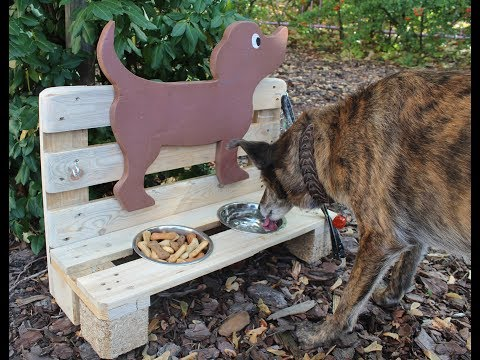 DIY Hundebar bauen - Palettenmöbel