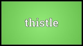 Thistle Meaning