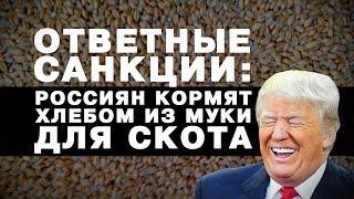 """""""ОТВЕТНЫЕ"""" САНКЦИИ: РОССИЯН КОРМЯТ ХЛЕБОМ ИЗ МУКИ ДЛЯ СКОТА..."""