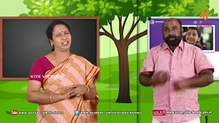 Standard 4 | Malayalam | Class – 04