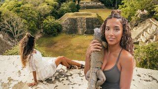 Mayan Ruins And Huge Iguanas In Belize