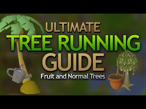 Ultimate Tree Running Guide (Best Farming XP)