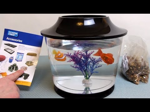 My First Fish Bowl - Detailed Review - By Pennine Pets / Crystal Clear