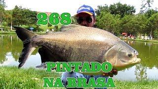 Programa Fishingtur na Tv 268 - Hotel Fazenda Pintado na Brasa