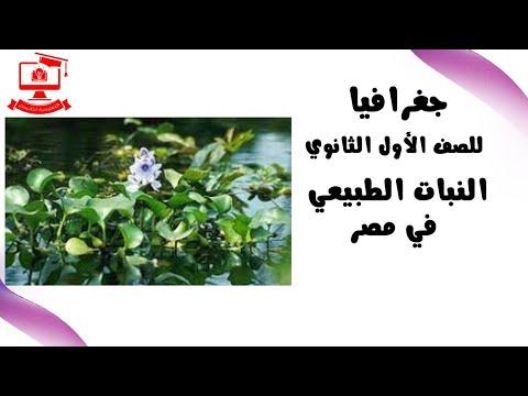 مباشر | جغرافيا للصف الأول الثانوي 2021 - الحلقة 16-  النبات الطبيعي في مصر