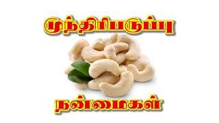 Munthiri Paruppu Benefits In Tamil (முந்திரிபருப்பு நன்மைகள்)