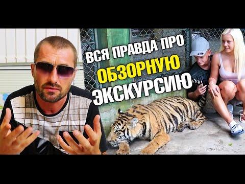 Что такое Обзорная экскурсия на самом деле? Тигры На Пхукете. Странная сигнализация видео
