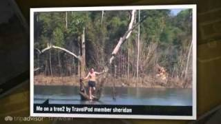 preview picture of video 'Khao Sak Nation Park, Raft Houses and Tree Houses Sheridan's photos around Khao Sok, Thailand'