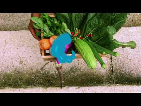 Farmz Singapore - Making of Cold Pressed Juices
