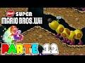 cueva De Florugas Parte 12 New Super Mario Bros Wii