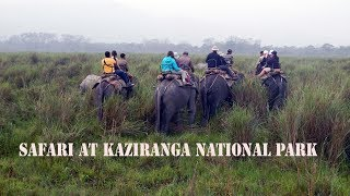 preview picture of video 'Kaziranga National Park'