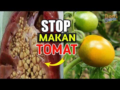 EFEK SAMPING DAN BAHAYA MAKAN BUAH TOMAT