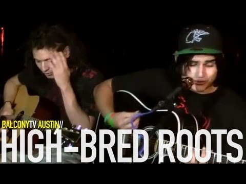 HIGH-BRED ROOTS - ONE CREATION