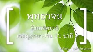 พุทธวจน  - ฝึกสมาธิ อานาปานสติ (สั้นๆ 11นาที)