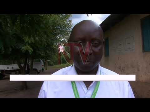 Kasese coffee farmers blame government officials for poor quality