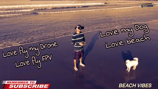Love fly my Drone, Love my Dog, Love beach, Love fly FPV