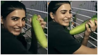 Actress Samantha Plucking Vegetables From Her Home Garden