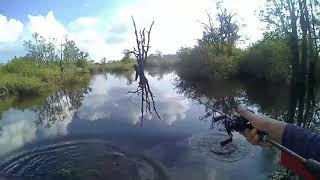 preview picture of video 'Strike Toman Danau Hanjalutung Palangka Raya'