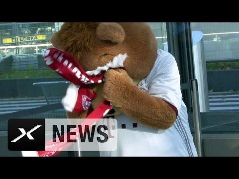 Bärenstark! Berni und der Kampf mit dem FCB-Schal | PSV Eindhoven - FC Bayern München