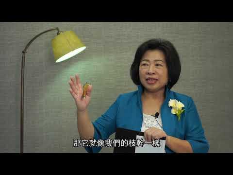 性平數位教材14【點亮性平,婦女的希望-CEDAW】