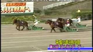 サダエリコオークス・ダービー両制覇
