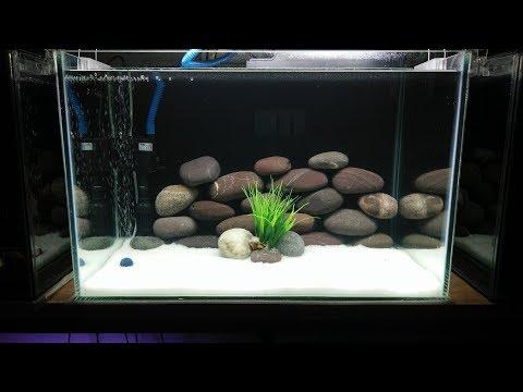freshwater aquarium setup 2018