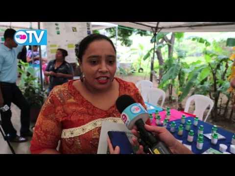 Gobierno Sandinista promueve la medicina alternativa
