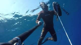 Spearfishing Croatia Summer 2017