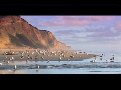 أجمل الشواطئ حول العالم 18