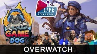 Игровые рабы играют OverWatch | GameDog