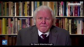 """Świat grozi """"zawaleniem się wszystkiego"""" bez zdecydowanych działań na rzecz klimatu, ostrzega brytyjski przyrodnik"""