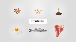 What is true about animal protein sources