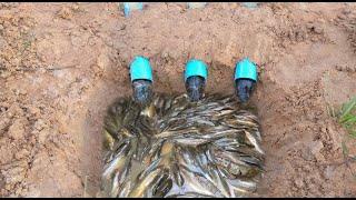 Смотреть онлайн Самый изощренный способ рыбалки без удочки