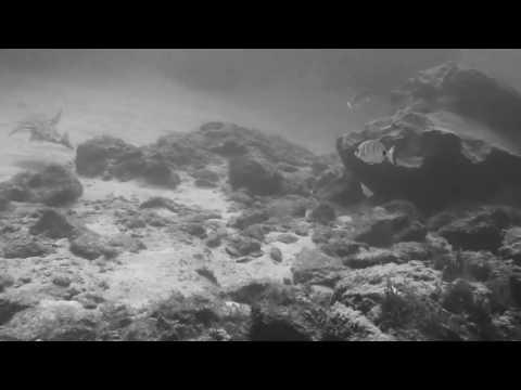 Scuba diving in Spain