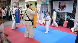 preview picture of video 'Hukutsu Dojo Kyokushin Karate en Shopping Night Premià de Mar / niños murallas'