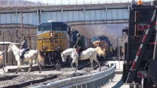 Who says trains and horses can't get along?
