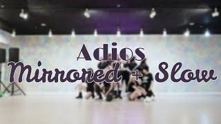 ;; Everglow {Adios} Dance Practice 50x Slow Mirror + Zoom