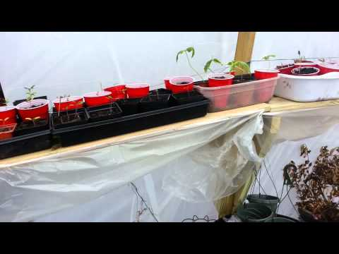 , title : 'Greenhouse Heat Tunnel Idea Version 1 - Warring on Late Winter