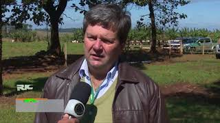 Dia de Campo em Umuarama aborda Integração Lavoura Pecuária e Floresta