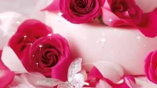 Most Beautiful Flowers Wallpaper