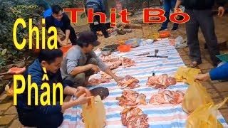 Làm thịt Bò chia phần ở miền núi | Cuộc sống miền núi